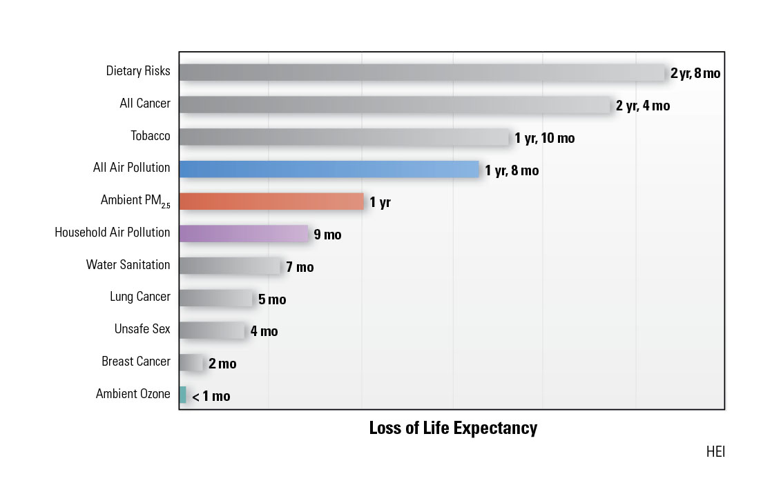 Contribution of major risk factors to loss of life expectancy.