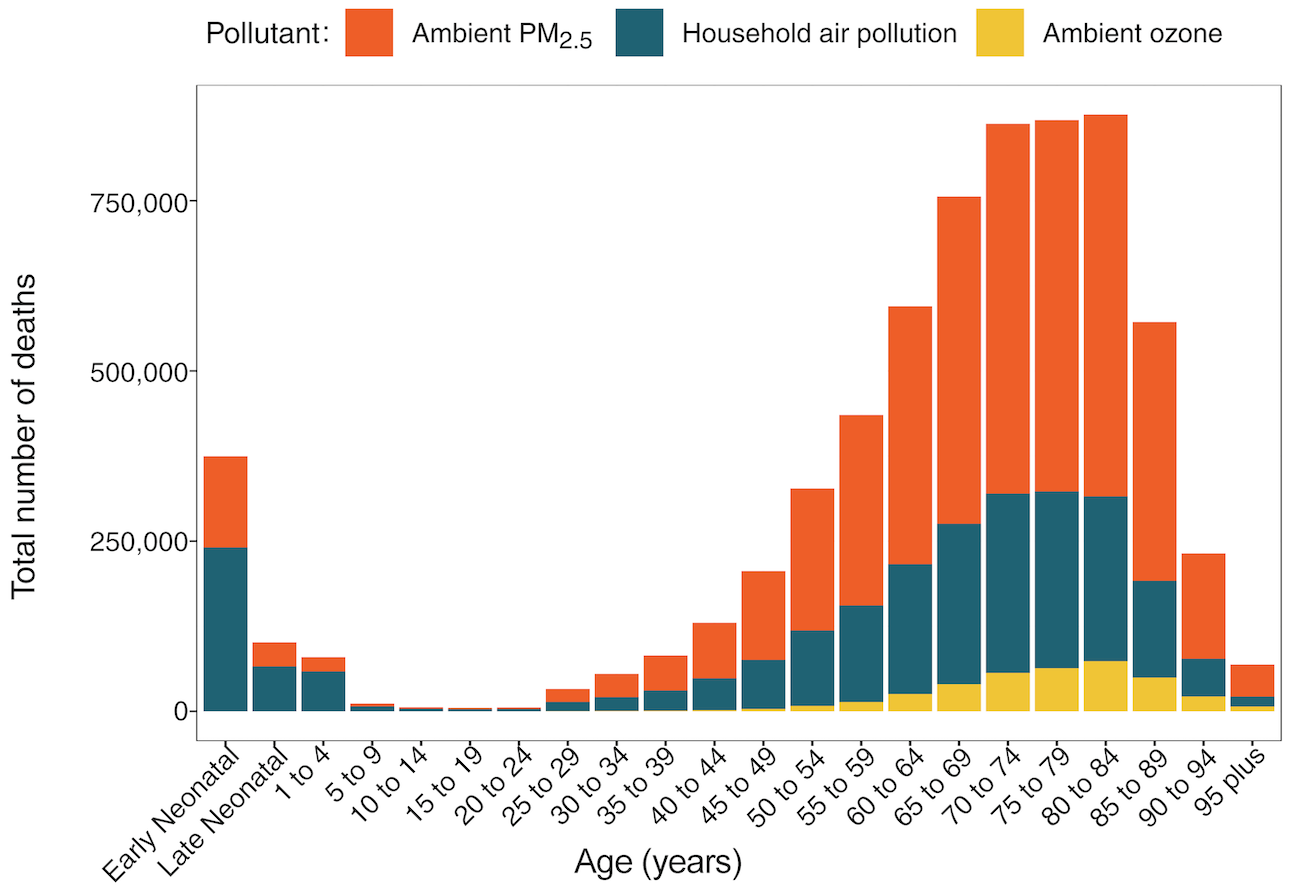 Global deaths by different types of air pollution by age
